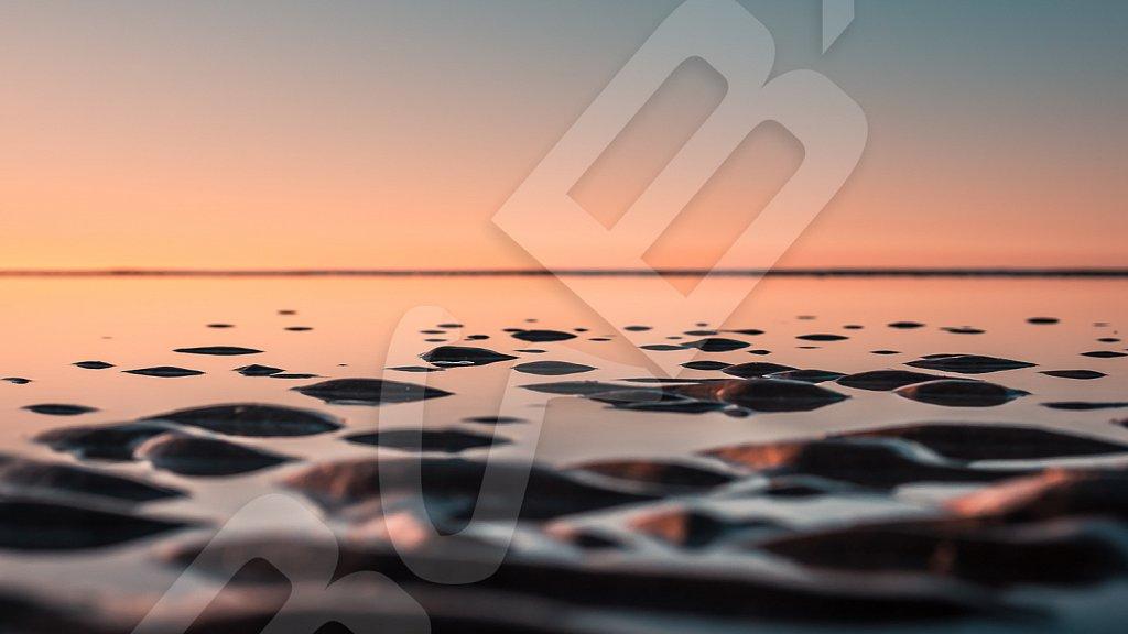 BabXIII-3657.jpg
